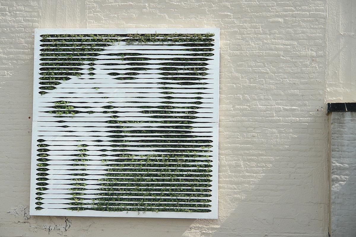 moss graffiti let it green tea after twelve