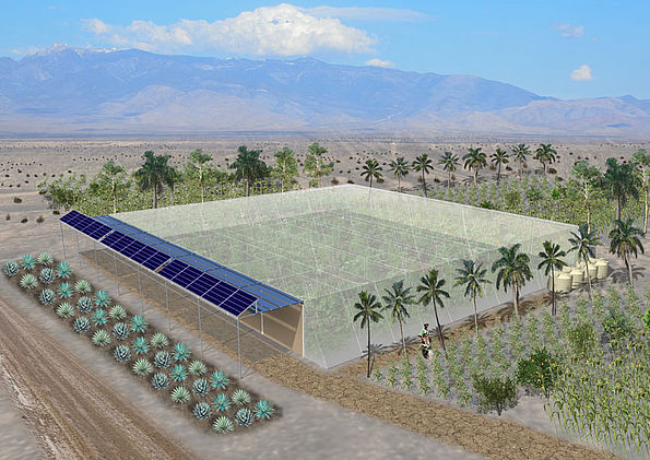 The Seawater Greenhouse Eco friendly farming in the